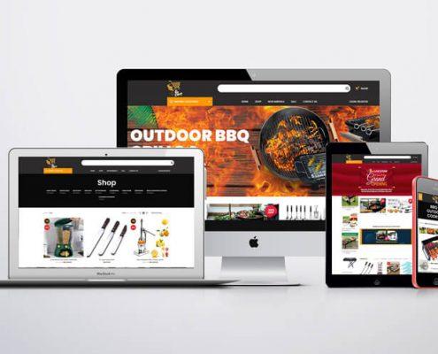 Website Design in Karachi